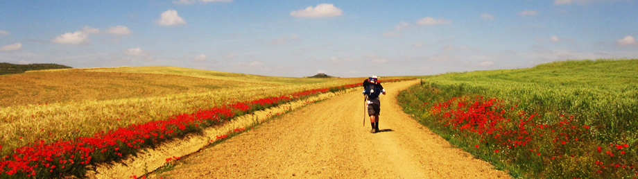 Really Long Walks El Camino De Santiago